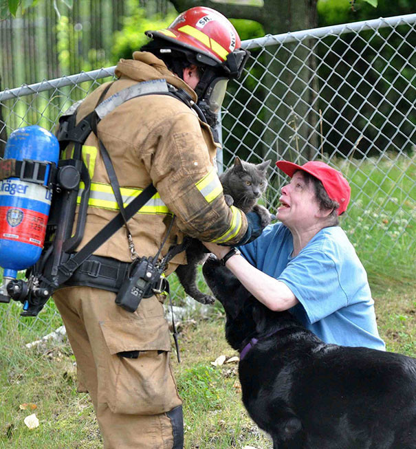 10. Пожарный спасает кота животные, пожарные, пожары