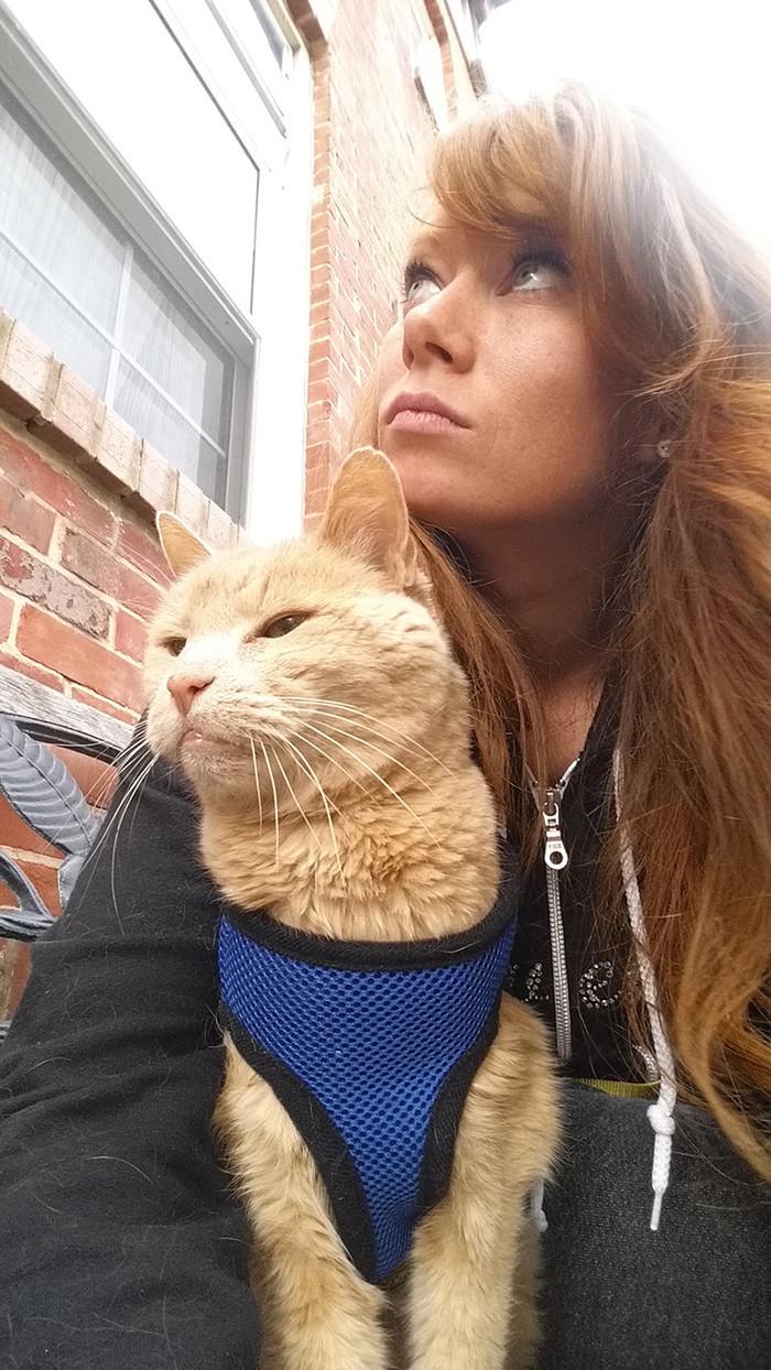 Тогда в его жизни появилась Адриэна Николь доброта, животные, коты