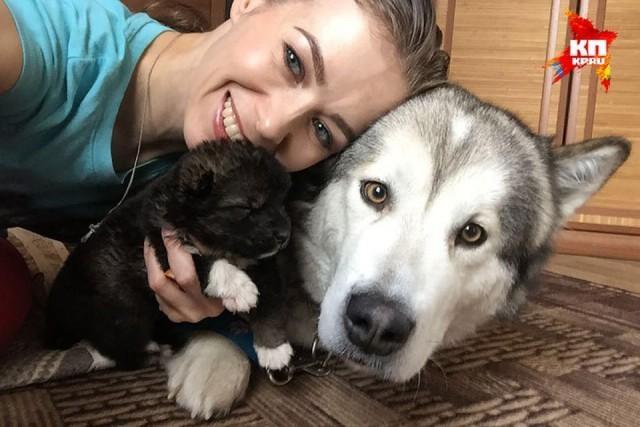 Она сделала ему искусственное дыхание и массаж сердца доброта, животные, история, собаки