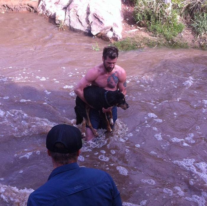 Храброго мужчину зовут Бобби Л'Оре животные, незнакомец, собака, спасение