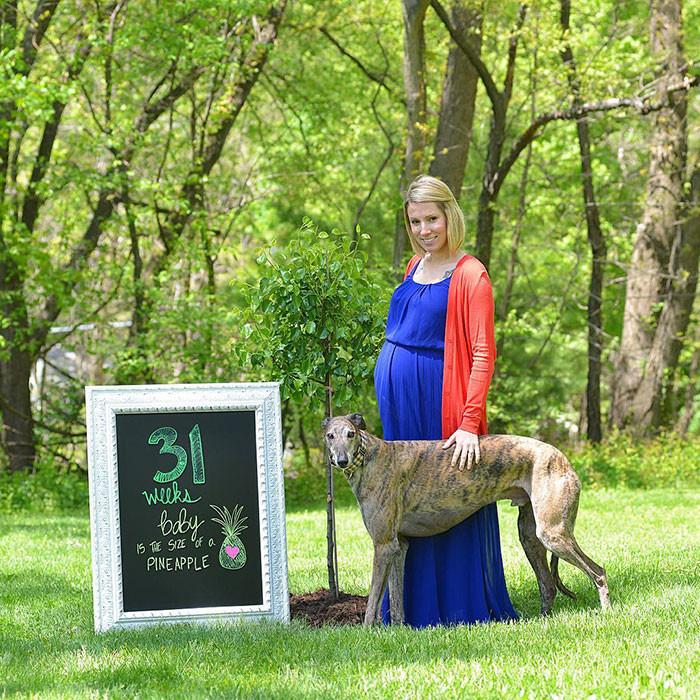 Младенец вернул псу любовь к людям братья меньшие, животные, любовь к людям, собаки