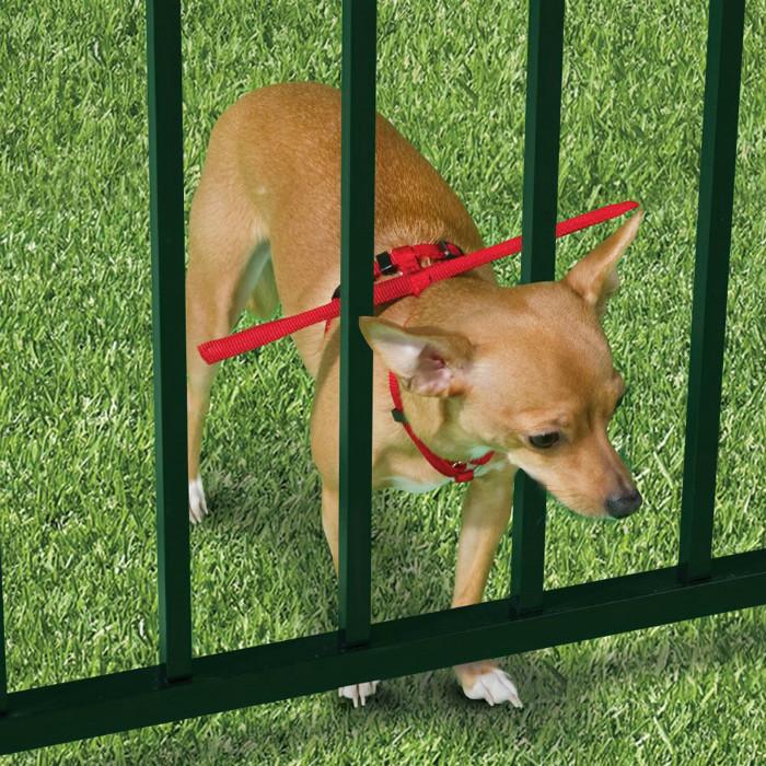 4. Ограничитель животные, собаки, советы, хитрости