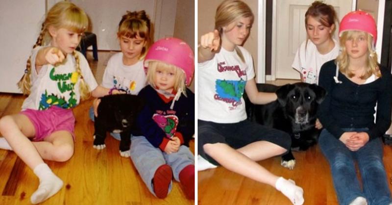 Три сестры и подружка. животные, питомцы, тогда и сейчас