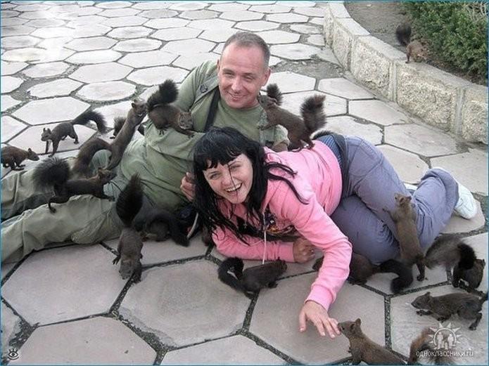Стая бродячих крыс с необычными хвостами доедает двух туристов. животные, нападения, не для слабонервных, человек