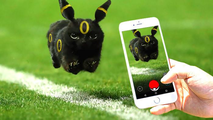 1. Покемон! интернет, кот, мемы, фотошоп