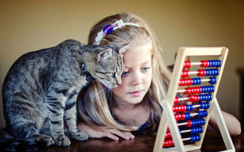 ...и арифметике дети, животные