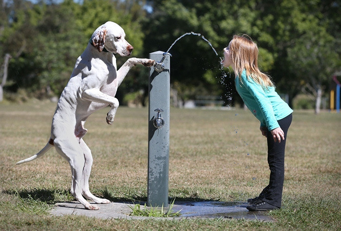 С ним не страшна жажда... дети, животные