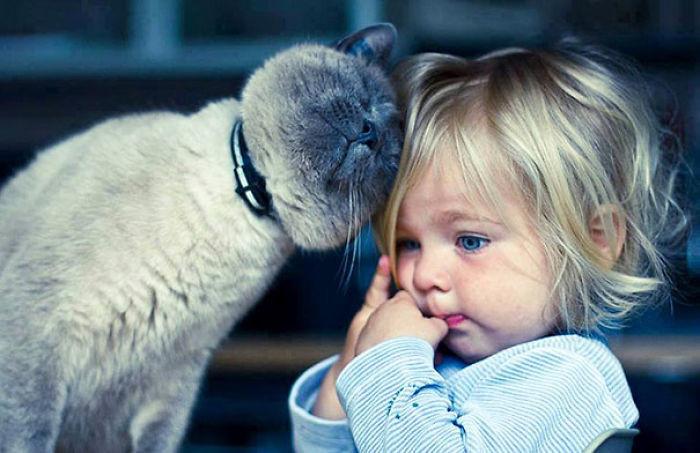 Он обеспечит ребенка лаской... дети, животные