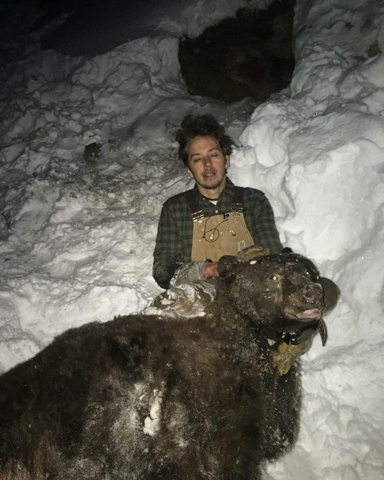 Настоящий доктор Дулиттл: ученый играет с медведями, енотами и китами животные, ученный