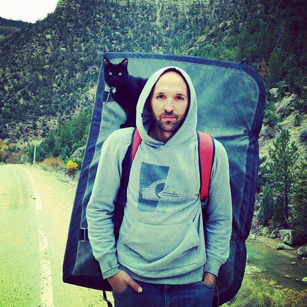 Мой кот - лучший партнер на скалах кошки, природа, путешествие, фото, юмор