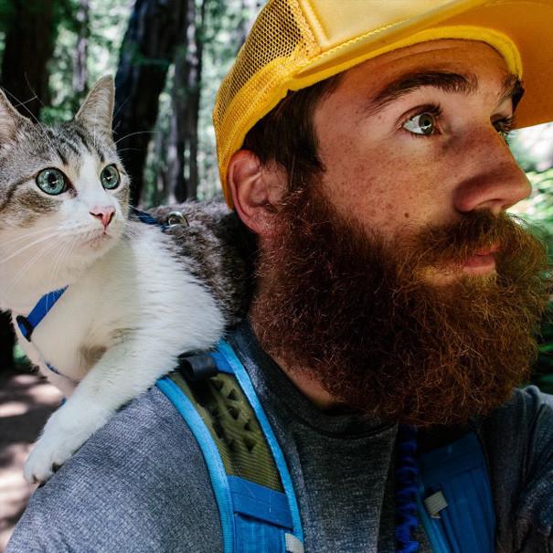 Мы- лучшие друзья. Даже смотрим всегда в одну сторону. кошки, природа, путешествие, фото, юмор