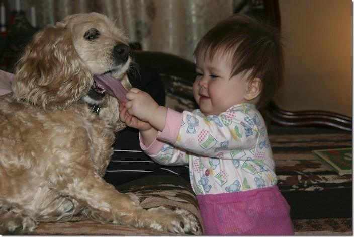 Осматривать пациентов нужно очень тщательно дети, животные, прикол, юмор