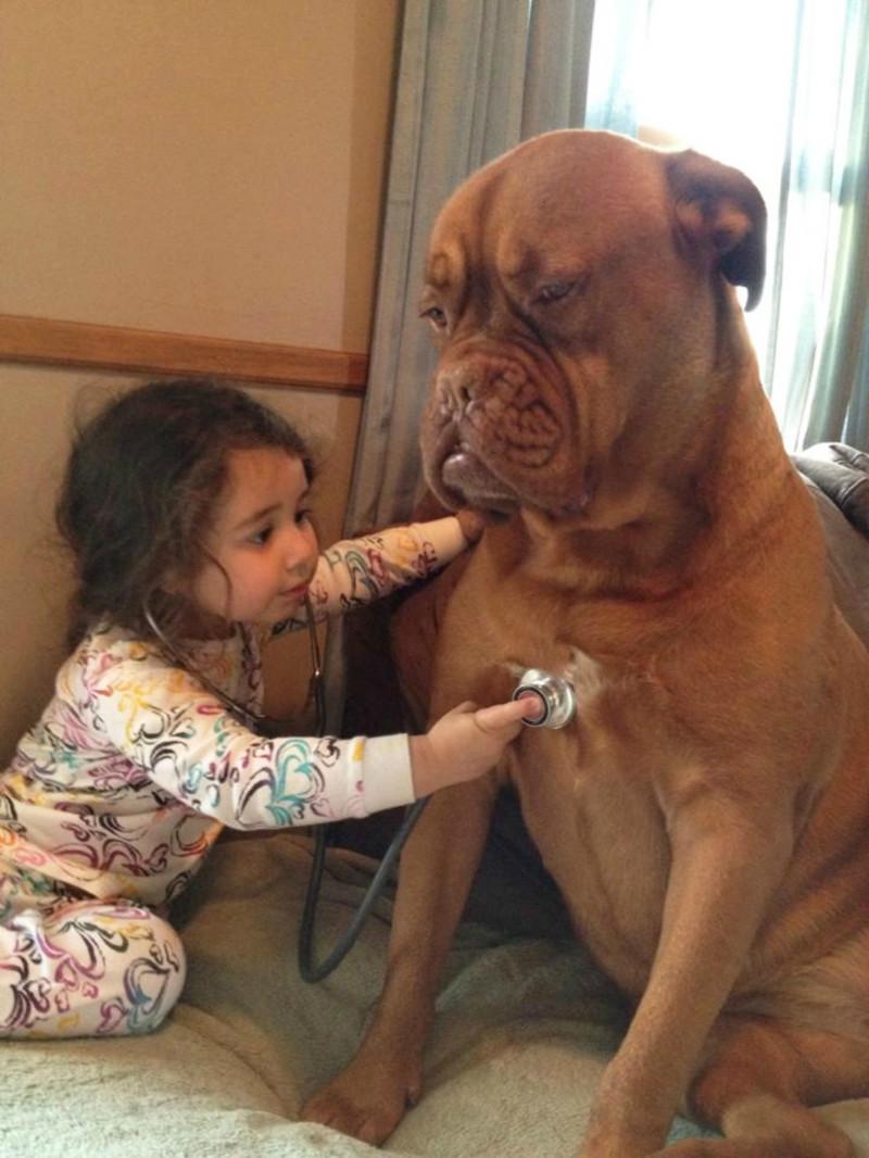 Один из самых распространённых видов «мучений» — игра в доктора дети, животные, прикол, юмор