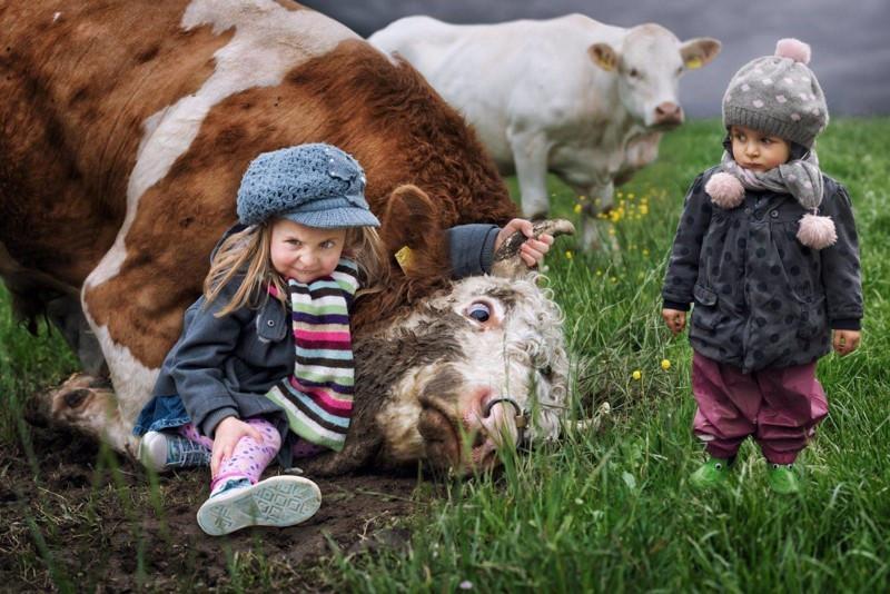 Вы только посмотрите на её лицо дети, животные, прикол, юмор