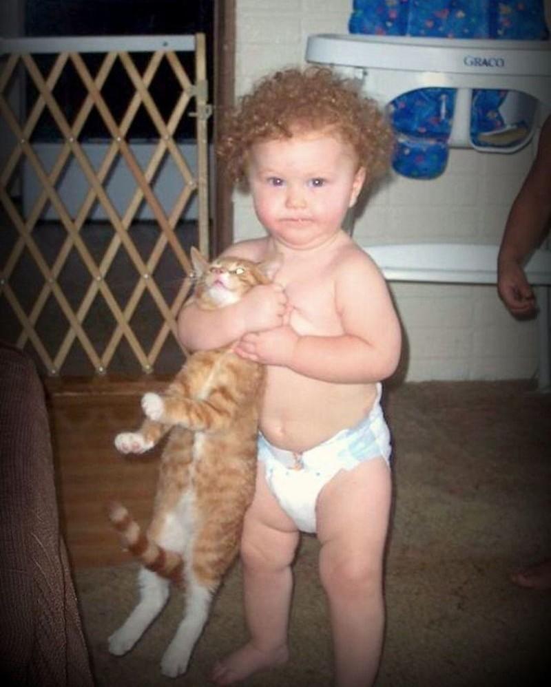 Котикам в домах с детьми тоже живётся совсем не сладко дети, животные, прикол, юмор