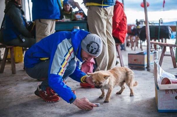 На второй день щенок уже ждал Леонарда на стартовой отметке собака, спорт