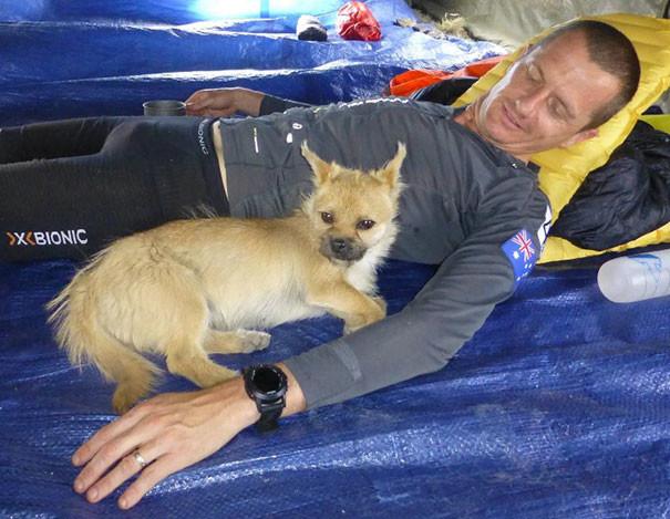 """""""Мы с Гоби подружились, и я буду оказывать ему всяческую поддержку, пока мы вместе"""" собака, спорт"""