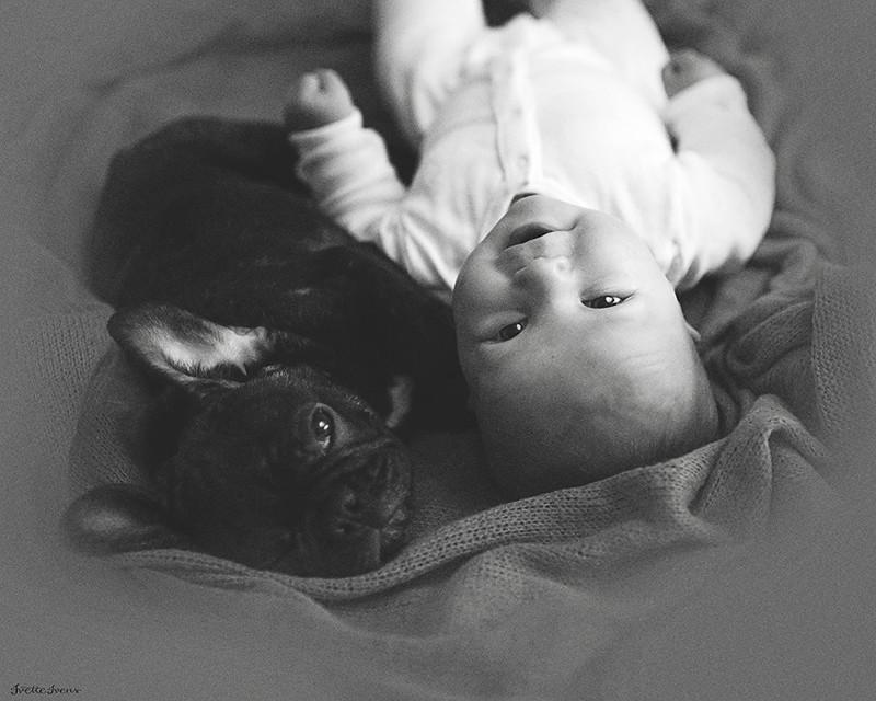 Ребенок и бульдог, родившиеся в один день, думают, что они братья бульдог, животные, милота, ребенок, собака