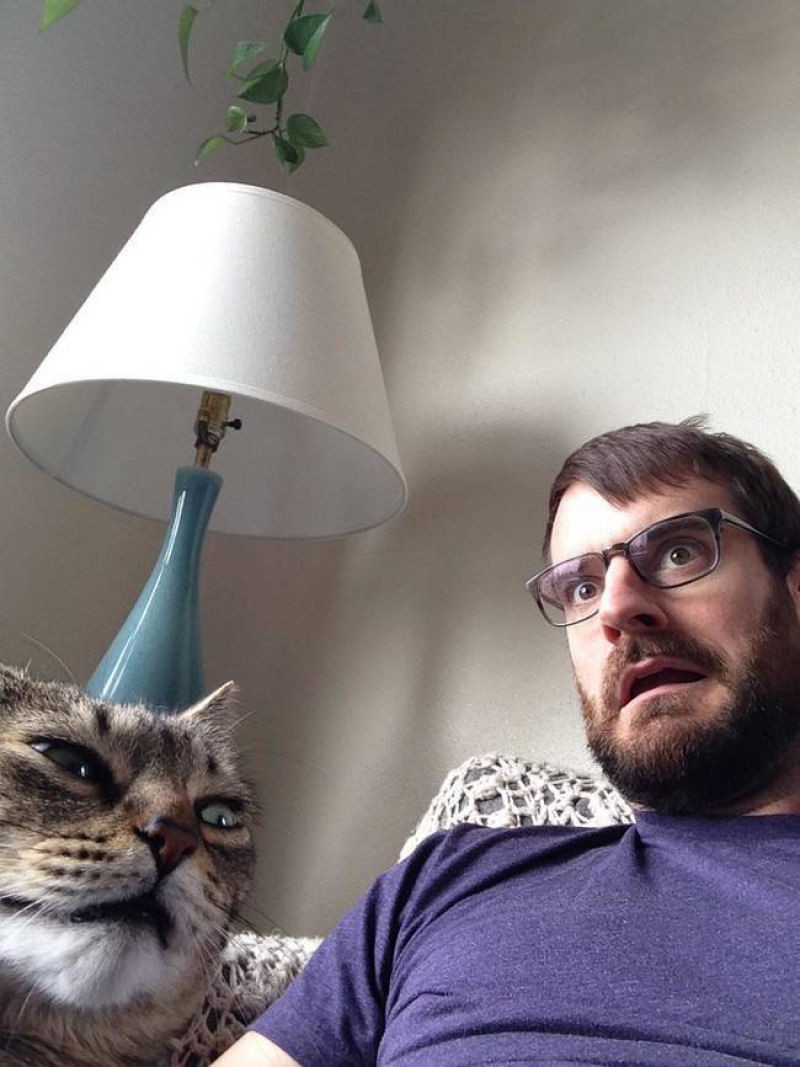 Котэ, который относится ко всем этим селфи очень скептически. котики, прикол, фото, юмор