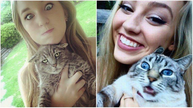 25 котов, которые очень не любят фотографироваться котики, прикол, фото, юмор