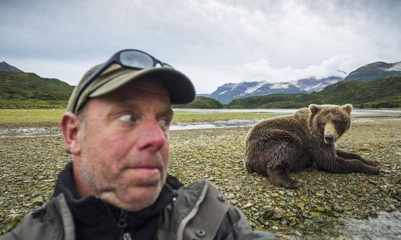 В наших широтах одним из самых популярных таких зверей является медведь. идиоты, прикол, селфи, юмор