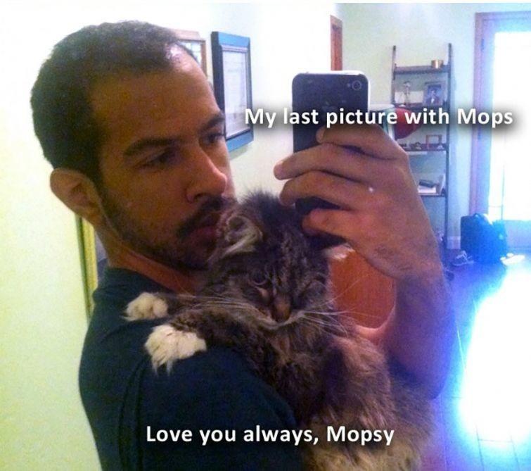 """""""Моя последняя фотография с Мопси"""" животные, истории, кошки, трогательно"""