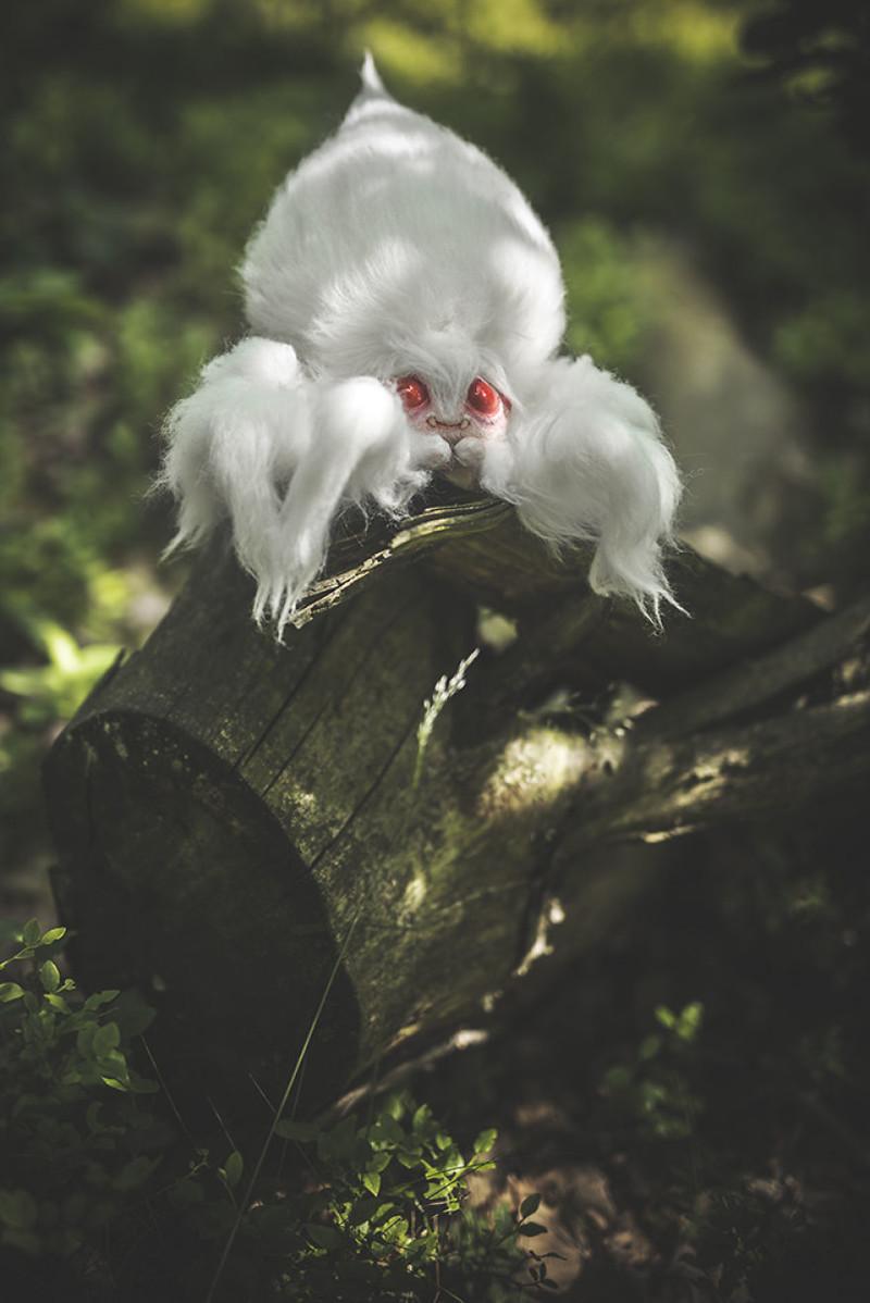 Гигантский сахарно-ваточный паук-альбинос  животные, сад, фантазия