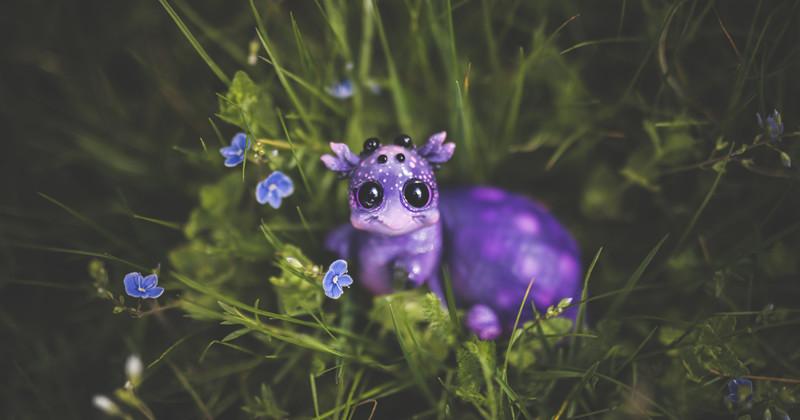 Улитка животные, сад, фантазия