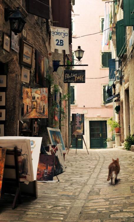 23. Парижский котофей наслаждается уличным искусством вокруг света, животные, коты, фотография