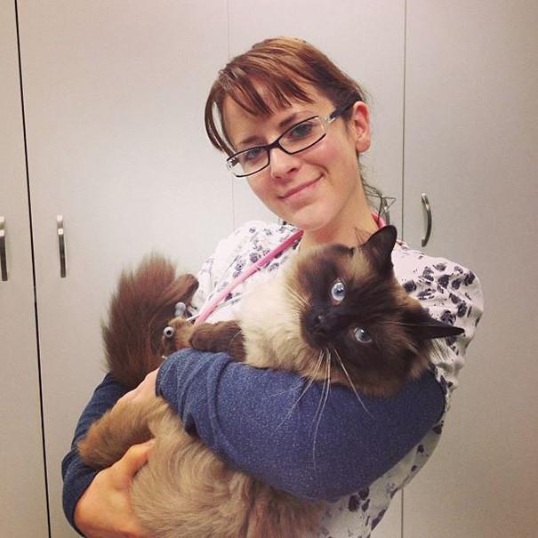 45 фотографий о преимуществах работы ветеринаром ветеринары, животные