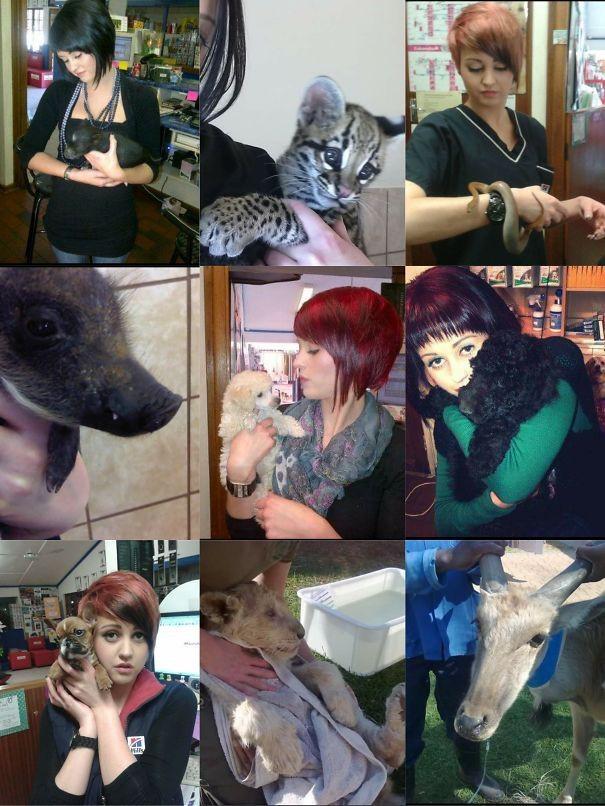 Лучшая работа в мире ветеринары, животные