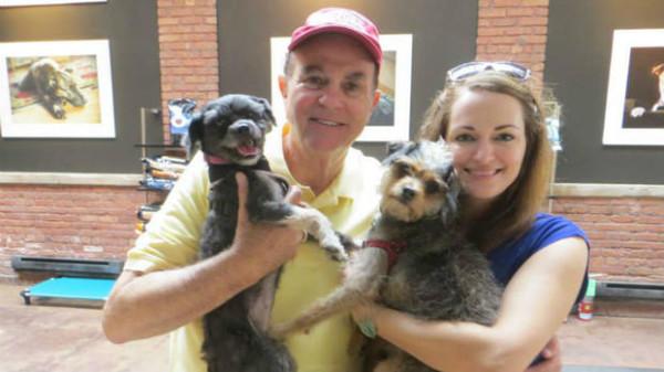 Теперь у нее идеальный новый дом, а заодно новый друг - щенок Линус зоозащитники, собака, стрижка, трансформация