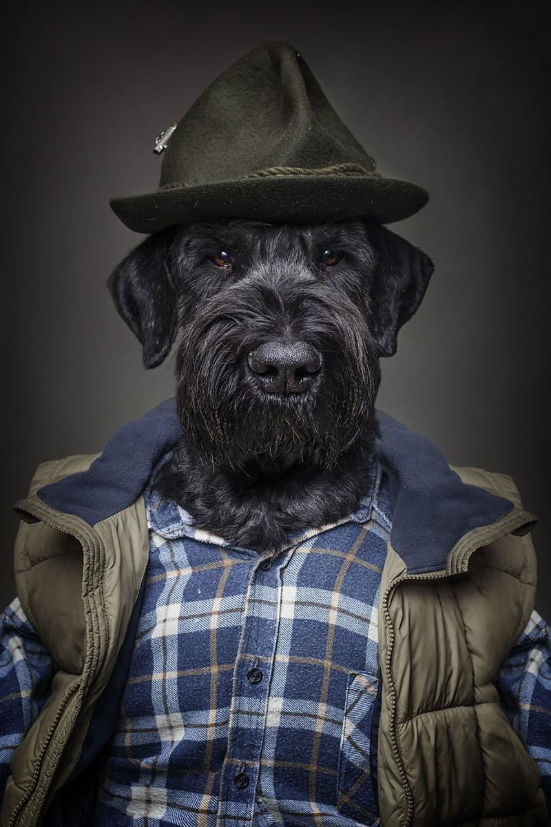 Днем рождения, смешные картинки человек с собакой