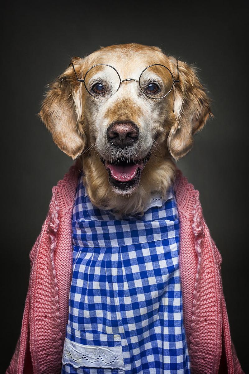 Картинки человек собака прикольные картинки