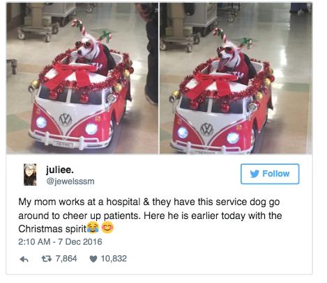 Пациенты и посетители радуются и постят фотки в твиттере больничные клоуны, всем добра, собака-помогака
