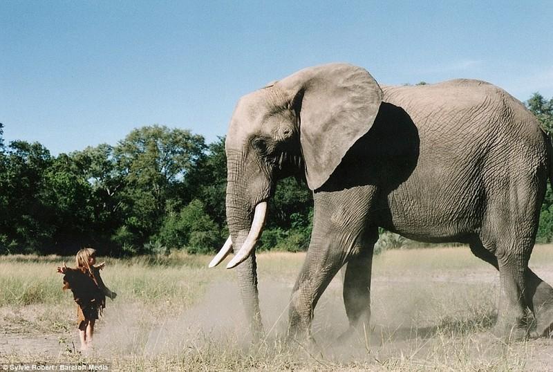 Слона по имени Абу испугались бы многие дети, но не Типпи (Ботсвана) африка, маугли, ребята и зверята, фотографии животных