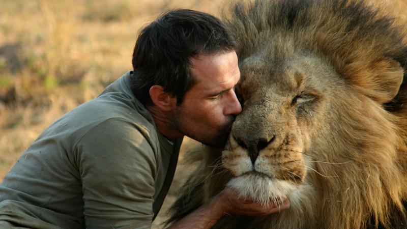 Удивительная дружба между человеком и животными дружба, животные, человек