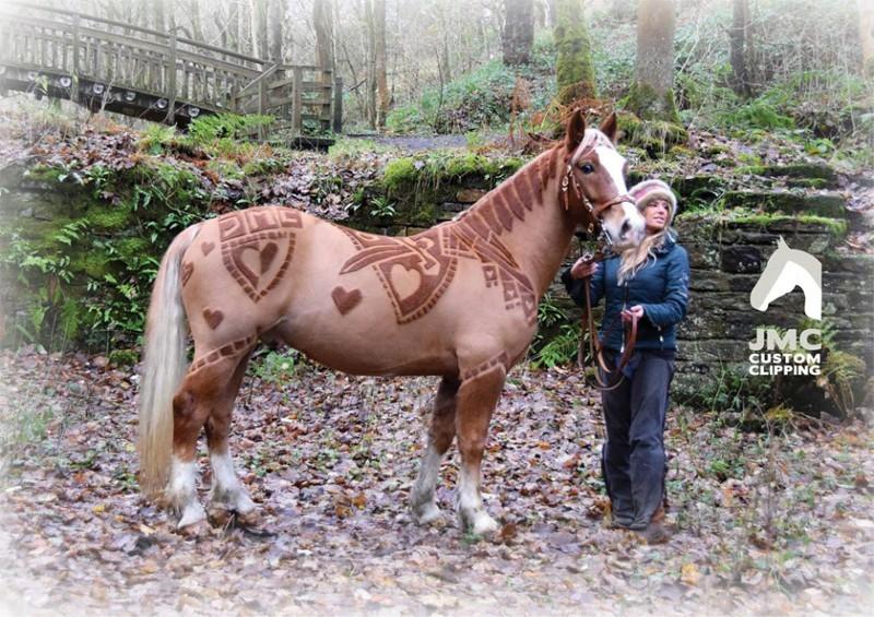 Великолепнее совершенных: лошади в орнаментах животные, лошадь