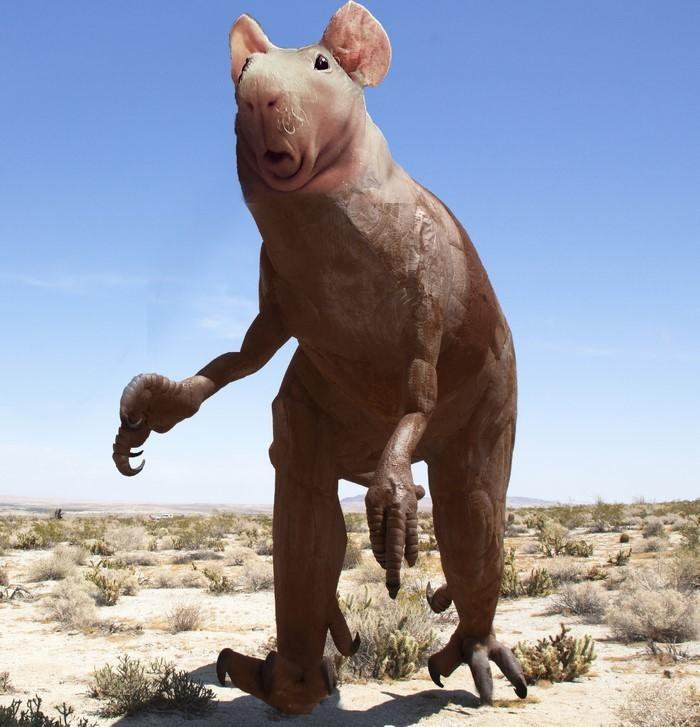 13. Динозавр  битва, морская свинка, фотошоп