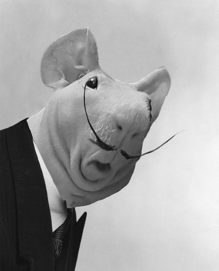 2. Сальвадор Дали  битва, морская свинка, фотошоп