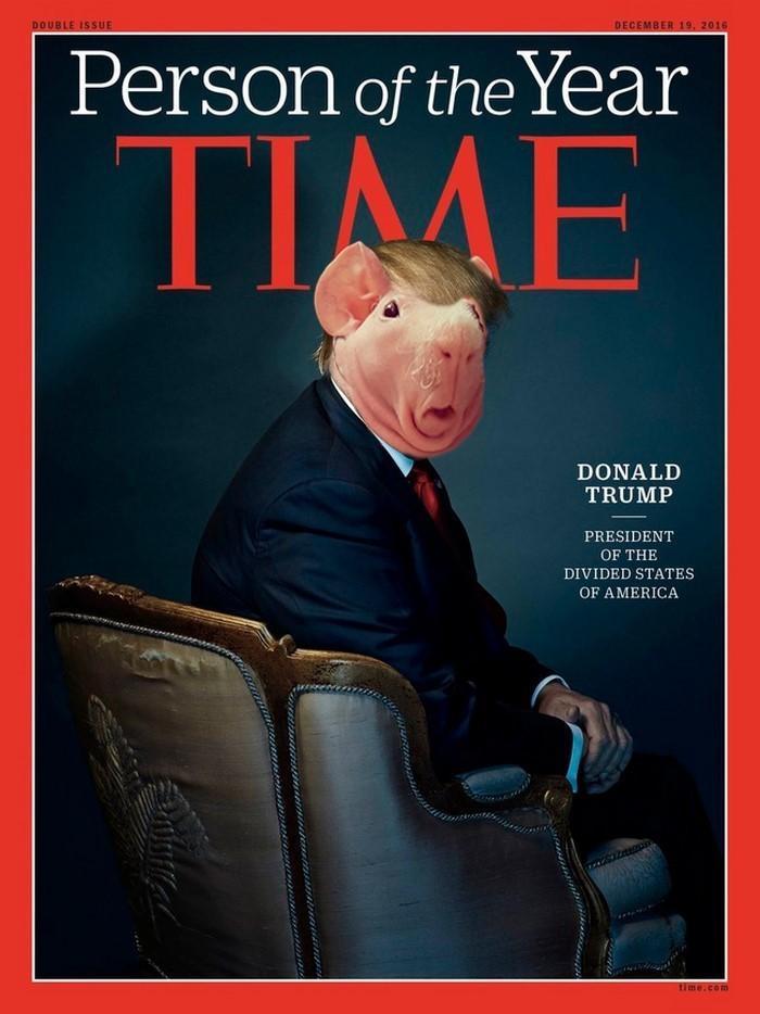 3. Человек года  битва, морская свинка, фотошоп
