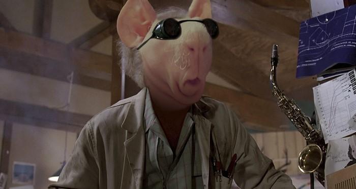 12. И снова профессор  битва, морская свинка, фотошоп