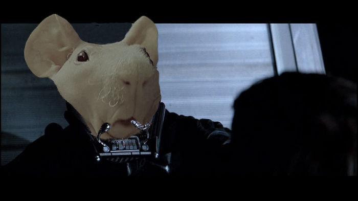 21. И зачем он носит... битва, морская свинка, фотошоп