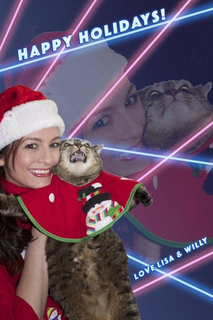 Хороший котик любит фейерверк! Но, кажется, хороший котик - это не я! животные, мелкие пакости, смешно, фото