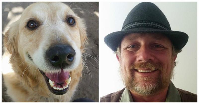 Эта собака так сильно любит получать почту,  что иногда почтальону приходится импровизировать животные, милота, собака