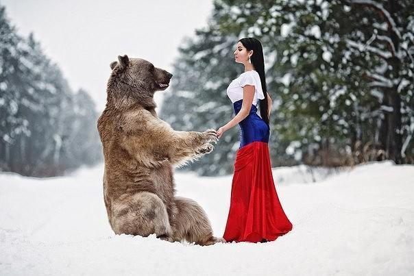 Красавица и Медведь: встреча в лесу животные, медведь, модель, триколор, факты, флаг, фото, фотограф