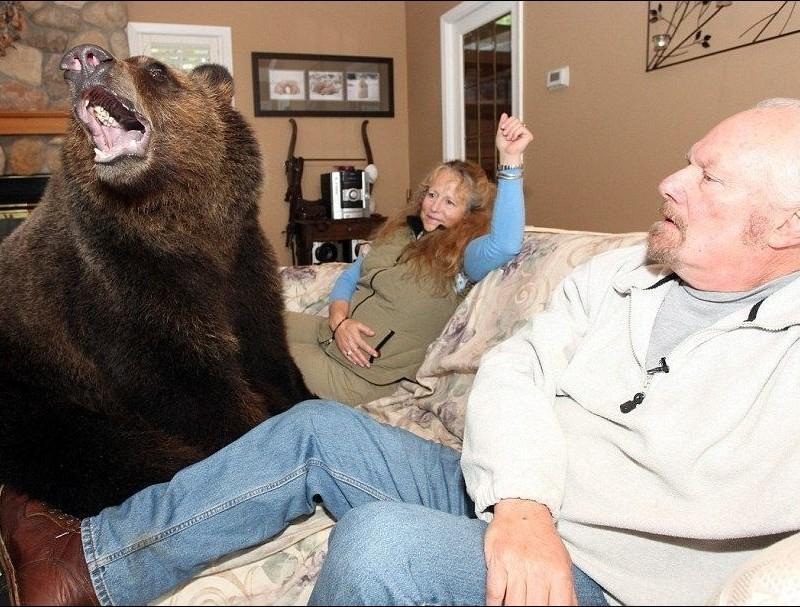 2.Бонни Харт - пенсионерка с необычным зоопарком  люди, соседи, странности