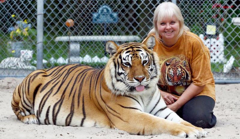 1.Дженис Хейли - матерь тигров. люди, соседи, странности
