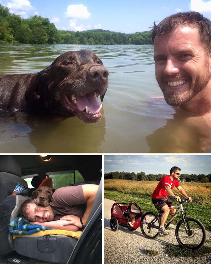 После того, как у пса диагностировали рак, хозяин устроил ему грандиозное путешествие животные, спасение, счастливый конец