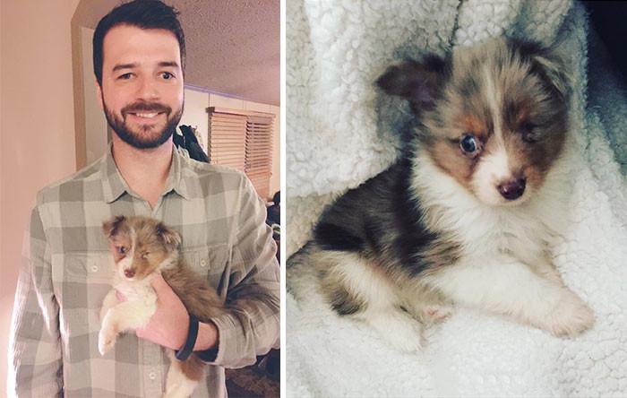 Мужчина, у которого видит лишь один глаз, купил одноглазого щенка, которого никто не хотел забирать  животные, спасение, счастливый конец